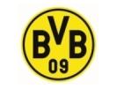 Das BVB-Logo