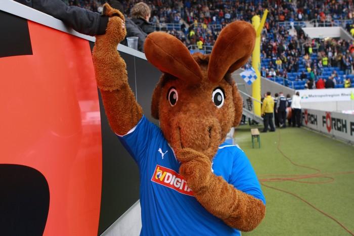 Eine der wenigen Ausnahmen im deutschen Fußball: Die TSG Hoffenheim