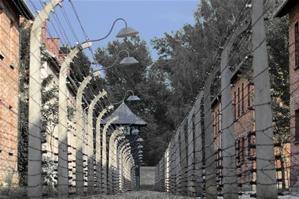 Tödlicher Stacheldraht im Stammlager