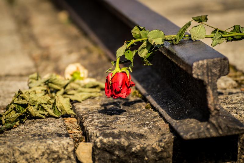 Die Erinnerung an Auschwitz darf nicht verwelken