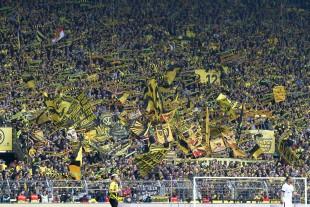 Auch Morgen heißt es für die Süd wieder alles für die Euro-League geben
