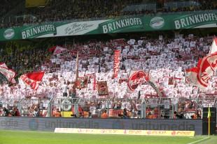 Hübsch anzusehen: Der Kölner Gästeblock